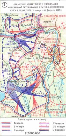 Инфографика: экипировка и внешний вид военнослужащих армий стран западной европы и северной америки